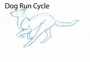 Dog Run Cycle- Pencil Test by nekonotaishou on DeviantArt