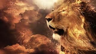 render  lion  sky  on ...