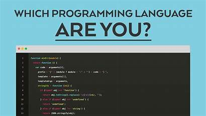 Programming Language Which Quiz Software Difficult Expert