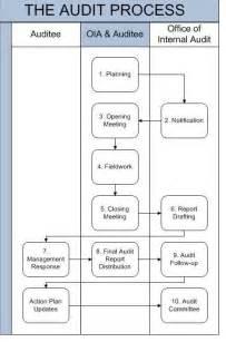 Audit Process and Procedures