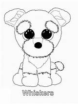 Beanie Boo Coloring Pages Ty Boos Whiskers Printable Puppy Jojo Siwa Kleurplaten Sanaas Colouring Party Sheets Babies Dog Kleurboeken Pet sketch template