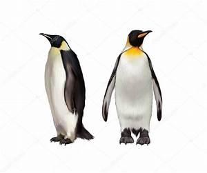 King Penguin, Gentoo and emperor penguin — Stock Photo ...