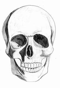 Drawn skull spooky - Pencil and in color drawn skull spooky