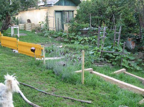 Zaun Hundesicher Machen by Gartenzaun Heimwerkerin