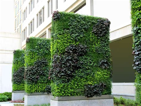 Of Vertical Gardens by World Class Green Wall Vertical Garden By Technic Garden