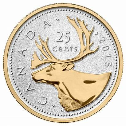 Coin Cent Canadian Gold Silver Series Plated