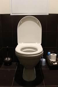 Comment Déboucher Les Wc : comment d boucher un wc comment entretenir ses toilettes ~ Dailycaller-alerts.com Idées de Décoration