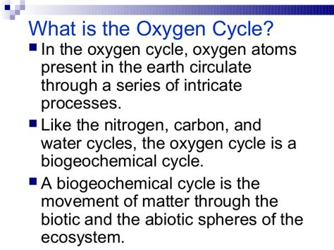 what is oxygen oxygen cycle