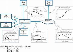 Clinical Pharmacokinetics And Pharmacodynamics Of Propofol
