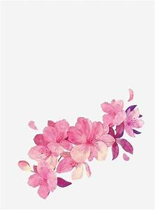 Painted Flowers  Petal  Pink  Flower Png Transparent