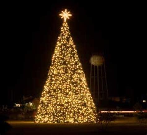 how to do christmas lights on trees christmas tree lights beyond the pulpit pastor mike