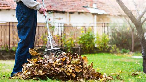 Rechen Gartenarbeit gartenarbeit im herbst bei freizeit haus und garten