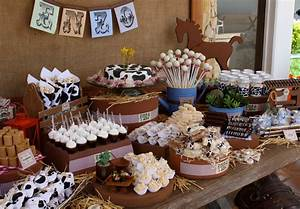 Party Frosting: Western Cowboy/cowgirl party ideas/inspiration