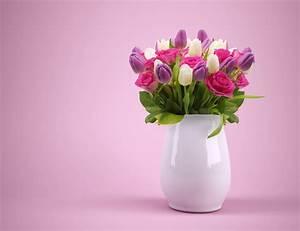 Schnittblumen Länger Frisch : schnittblumen l nger frisch halten haushalt tipps ~ Watch28wear.com Haus und Dekorationen