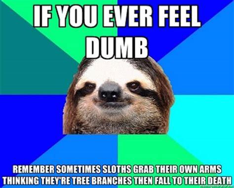 Make A Sloth Meme - amusing memes to make you laugh out loud 37 pics izismile com