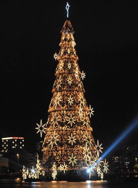 christmas trees   world   christmas