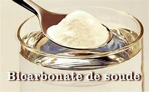 Ou Trouver De L Acide Citrique : 100 recettes avec le bicarbonate de soude ~ Dailycaller-alerts.com Idées de Décoration