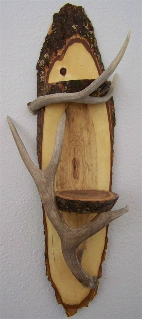 Galleher Flooring San Francisco by 19 Deer Antler Wall Shelf By How To Find Antlers