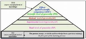 Fig  1  The Classification Pyramid Of The Levels Of