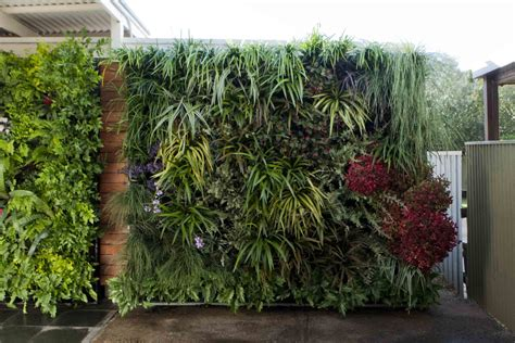 Vertical Home Garden by An Expert S Guide To Vertical Gardens Home Beautiful