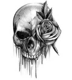 Skull and Rose Tattoo Designs Drawings
