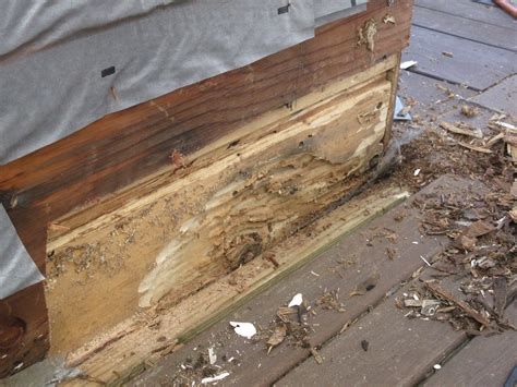 deck joist flashing pictures to pin on pinterest pinsdaddy