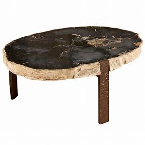 oval coffee table with petrified wood top at 1stdibs With plank top coffee table