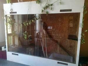 Mein Foto Xxl : xxl terrarium wie neu bei neuruppin fehrbellin opr brandenburg gr ner leguan in l chfeld ~ Orissabook.com Haus und Dekorationen