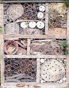 5, Surprising, Ways, To, Use, Pine, Cones, In, The, Garden