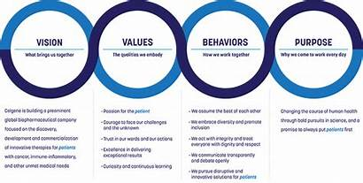 Values Culture Celgene Vision Purpose Behaviors Building