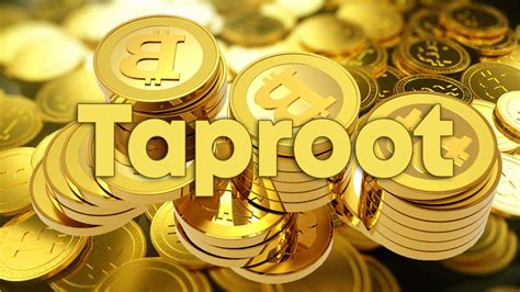 Furthermore, taproot also proposes significant privacy promises — i.e., it seeks to make all in edgerton's view, taproot demonstrates the bitcoin community's maturity and how everyone seems. Bitcoin Blockchain Might Undergo the Largest Upgrade to Date   CoinMod
