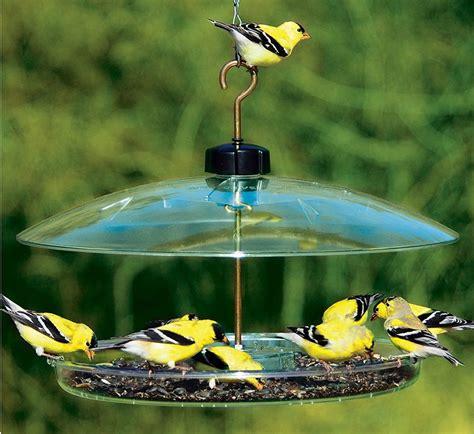 covered platform bird feeder cpf droll yankees