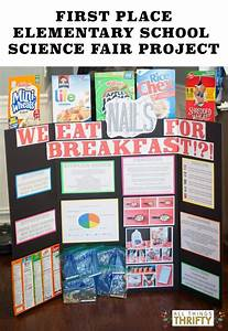 First Place Elementary School Science Fair Project