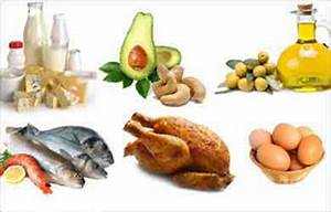 Image Gallery lipids food
