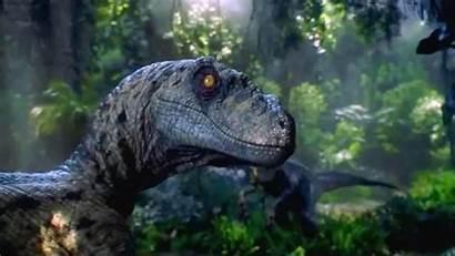 Spinosaurus Wallpapers Jurassic Park 1024a Adorable Wallpaperplay