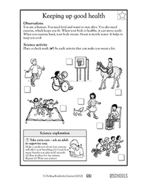 health science worksheets for kindergarten 1st grade 2nd grade kindergarten science worksheets