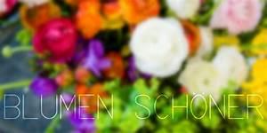 Blumen Erkennen App : home blumen sch ner blumen nat rlich und sch n ~ Eleganceandgraceweddings.com Haus und Dekorationen