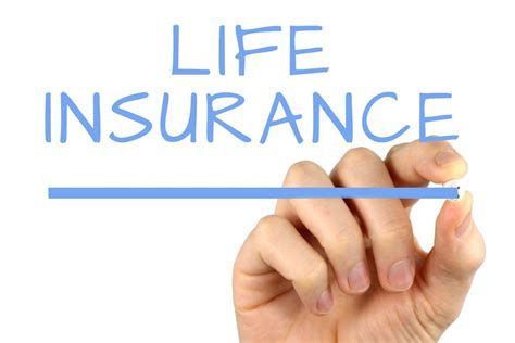 How Life Insurance Comparison Can Save You Cost  Madailylife. Brittney Moses Signs. Visual Field Signs Of Stroke. Flood Signs Of Stroke. Cut Out Signs Of Stroke. Wedding Reception Signs Of Stroke. Lock Signs. Autistic Signs. Colored Signs