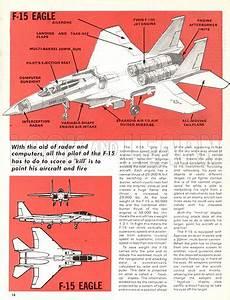The Mcdonnell Douglas F-15 Eagle