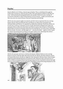 Mise En Scene Essay Sample Of A Dissertation Mise En Scene Essay  Mise En Scene Essay Online Hw Help