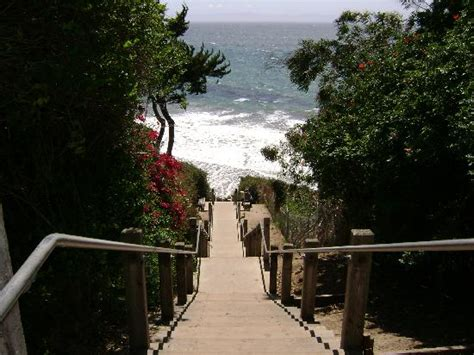A thousand steps to the Beach from Mesa Lane - Picture of ...