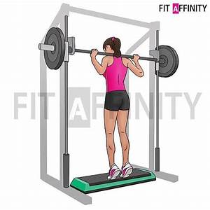 Fitaffinity  U2014 Standing Smith Machine Calf Raise Muscles