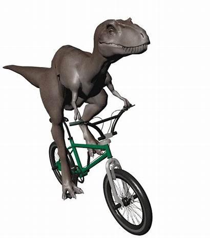 Dinosaurus Plaatjes Dino Fiets Sportieve Een Animaatjes