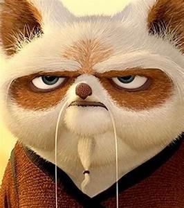 Photo: Master Shifu in Kung Fu Panda