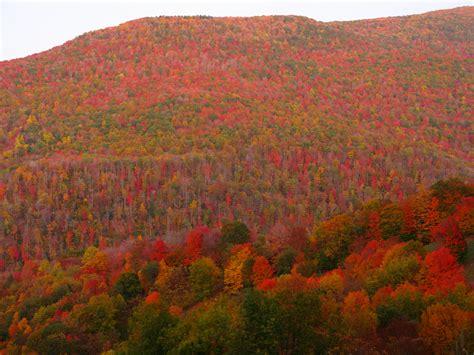 fall colors in virginia file fall colors mountains west virginia forestwander jpg