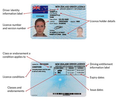Your Driver Licence Explained