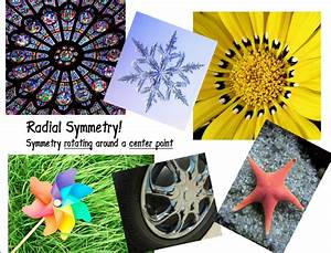 The Artsy Fartsy Art Room: Radial Symmetry Junk & Snowflakes