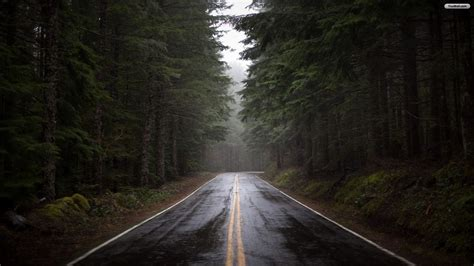Follow us for regular updates on awesome new wallpapers! Dark Forest iPhone Wallpaper (74+ images)