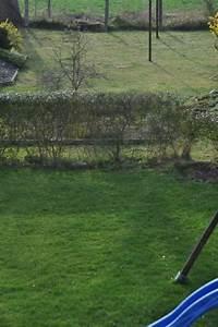 Rasen Wächst Nicht : rasenpflege im fr hjahr 2018 wann d ngen m hen vertikutieren hausbau blog ~ Eleganceandgraceweddings.com Haus und Dekorationen