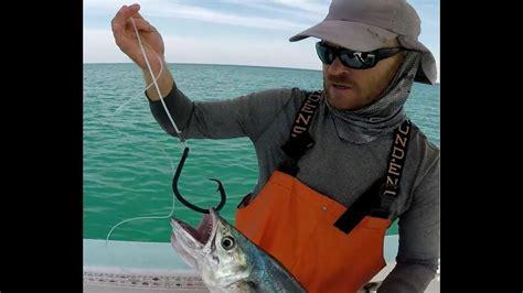 grouper goliath rigging